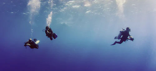 Featured image 6 Things You Should Know About Spear Fishing Have someone with you - 6 Things You Should Know About Spear Fishing