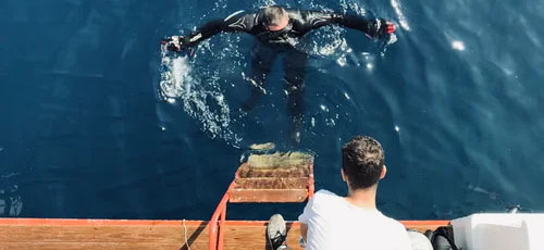 Featured image 6 Things You Should Know About Spear Fishing Know the regulations - 6 Things You Should Know About Spear Fishing