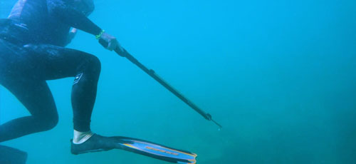 Featured image 6 Things You Should Know About Spear Fishing Make yourself invisible - 6 Things You Should Know About Spear Fishing