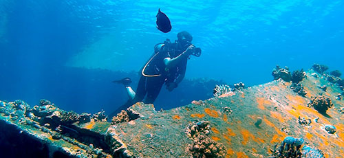 Featured image Use of Scuba Gear for Spear Fishing Blue Water Explorers - Use of Scuba Gear for Spear Fishing