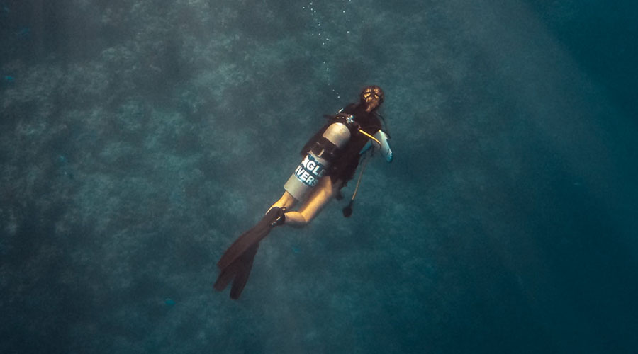 Featured image Use of Scuba Gear for Spear Fishing - Use of Scuba Gear for Spear Fishing